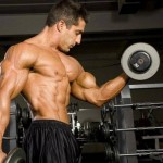 how to build muscle mass fast for beginners
