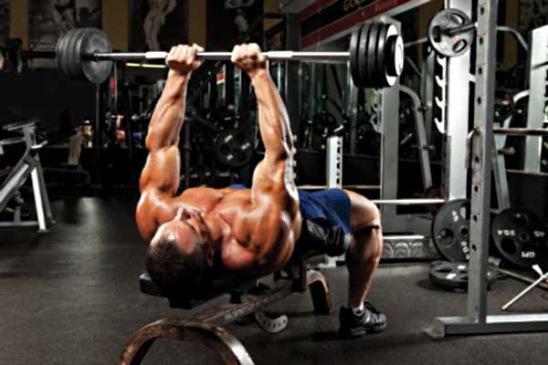 Critical Bench Review A Bench Press Enhancing Program