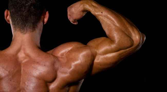 deltoid exercises without weights