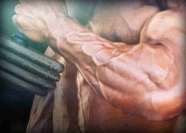 build forearm strength