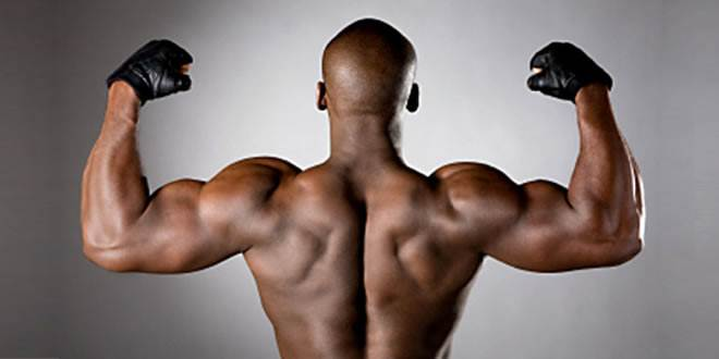 best lat workouts at home, Muscles