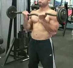 Barbell Curls