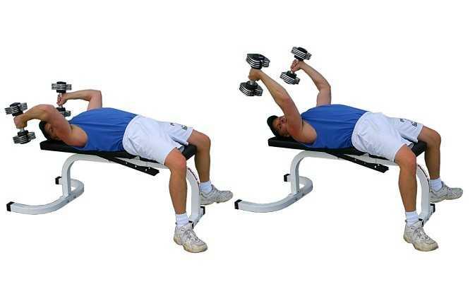 Dumbbell Triceps Exten... Deadlifts With Dumbbells