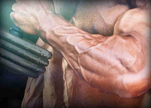 build forearm strength