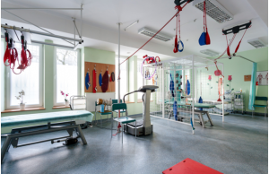 Rehabilitation Equipment
