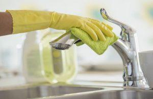 Clean Your Kitchen Sink